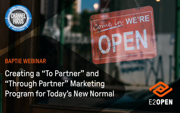 Creating a 'To Partner' and 'Through Partner' Marketing Program for Today's New Normal
